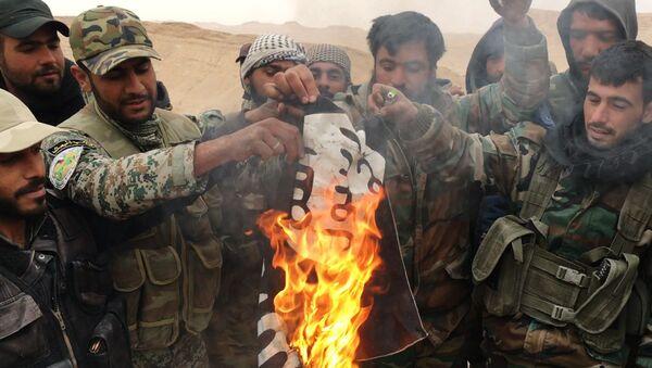 Militares sirios y milicias del grupo Halcones del Desierto queman la bandera de ISIS (archivo) - Sputnik Mundo