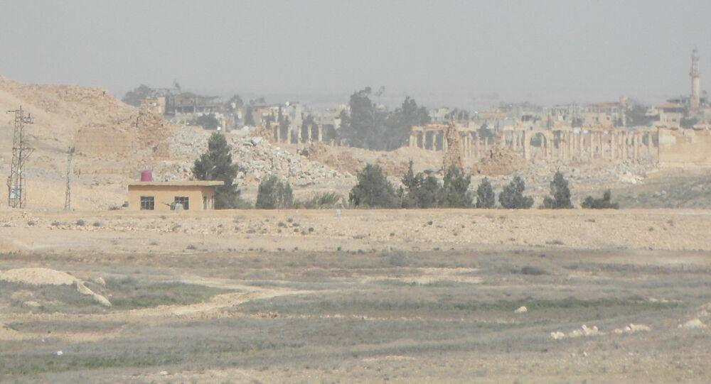 La ciudad de Palmira, liberada de los terroristas