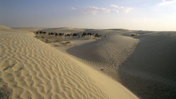 Desierto del Sahara (archivo) - Sputnik Mundo