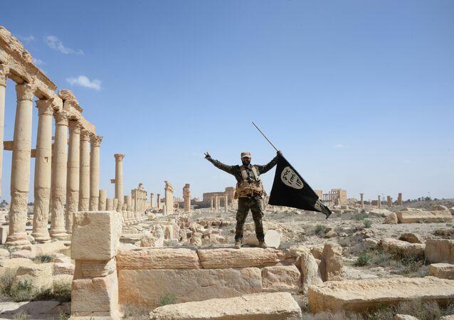 Militante del grupo Halcones del Desierto con la bandera de Daesh en Palmira