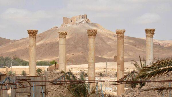 La Ciudadela de Palmira - Sputnik Mundo