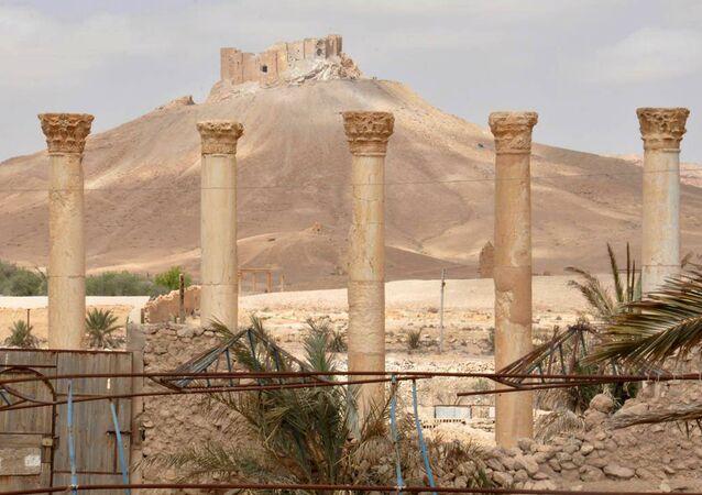 La Ciudadela de Palmira