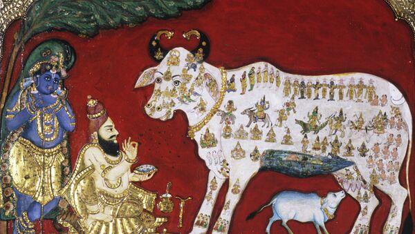 Vaca en la pintura india del siglo XVIII - Sputnik Mundo