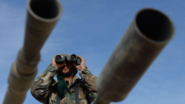 Rusia registra siete violaciones de la tregua en Siria en la última jornada - Sputnik Mundo