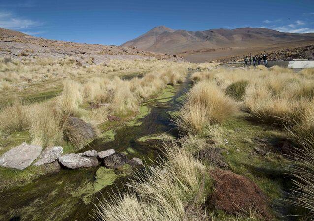 Las fuentes de Silala en Bolivia