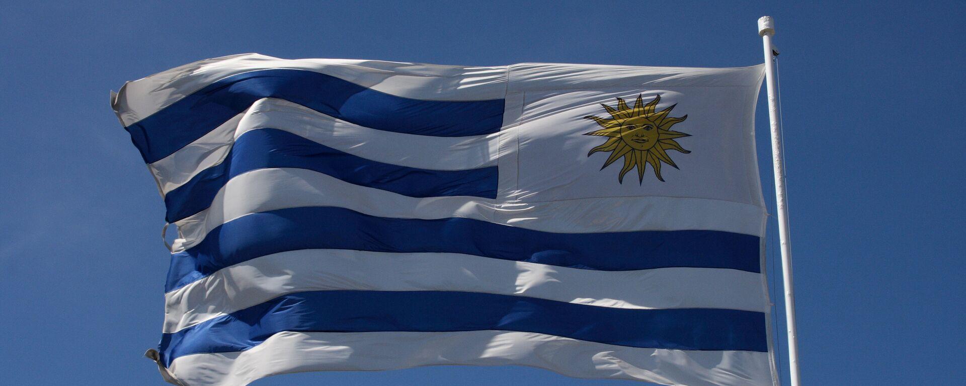 La bandera de Uruguay - Sputnik Mundo, 1920, 26.01.2021