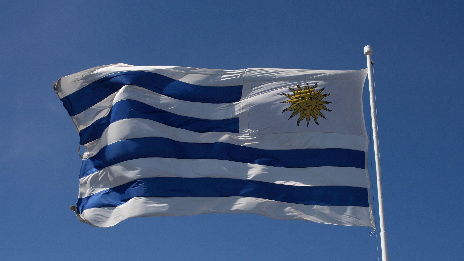 La bandera de Uruguay - Sputnik Mundo, 1920, 30.04.2021