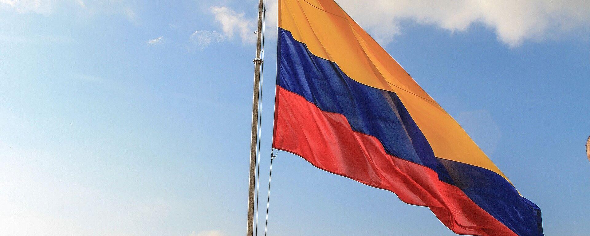 Bandera de Colombia - Sputnik Mundo, 1920, 07.05.2021