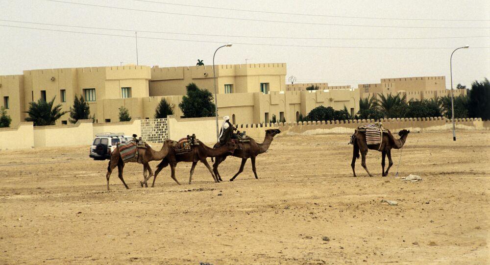 Sáhara Occidental (archivo)