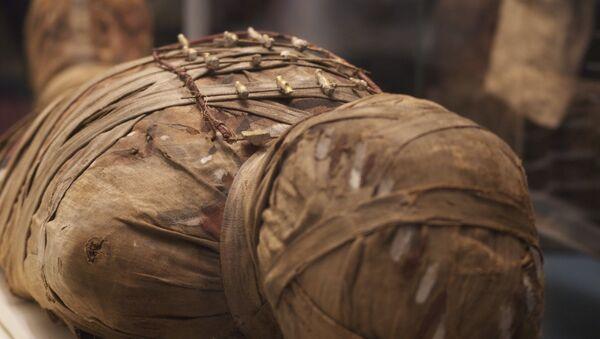 Una momia (imagen referencial) - Sputnik Mundo
