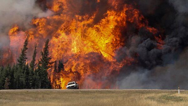 Incendio forestal en Canadá - Sputnik Mundo