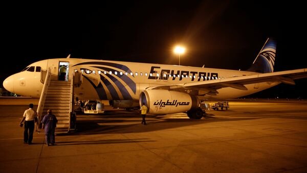 Airport security check an EgyptAir plane after it arrived from Cairo to Luxor International Airport, Egypt - Sputnik Mundo