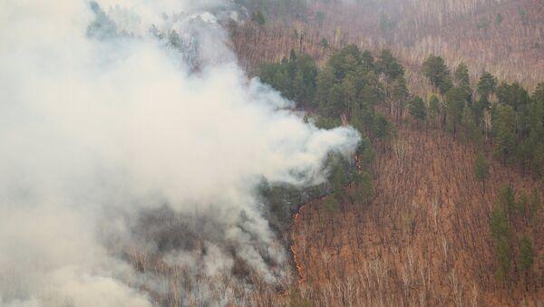 Incendios forestales en el Lejano Oriente ruso - Sputnik Mundo