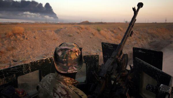 Ofensiva del Ejército iraquí contra Daesh en la ciudad de Faluya - Sputnik Mundo