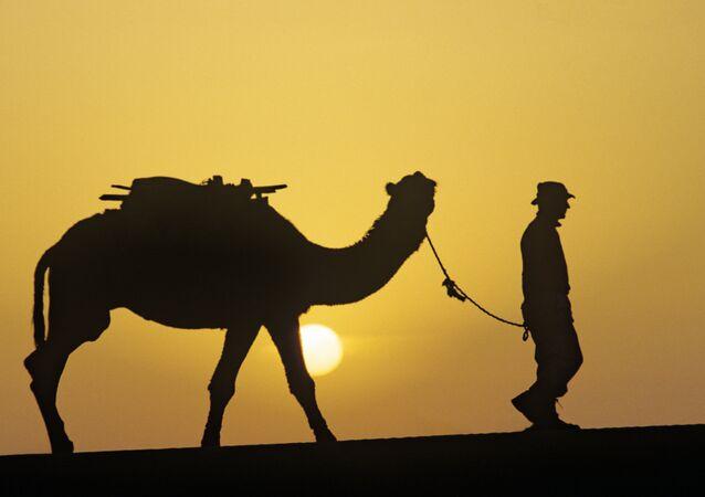 Un camello con su amo