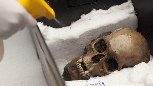 Un arqueólogo pulveriza agua en un cráneo descubierto en el Templo Mayor en la Ciudad de México, en 2012. - Sputnik Mundo