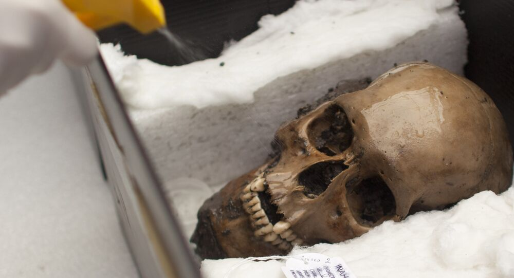 Un arqueólogo pulveriza agua en un cráneo descubierto en el Templo Mayor en la Ciudad de México, en 2012.