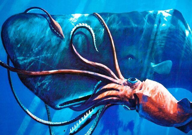 Un cachalote ataca a un calamar gigante