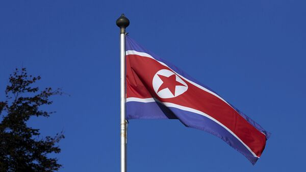 A North Korean flag flies on a mast at the Permanent Mission of North Korea in Geneva October 2, 2014. - Sputnik Mundo