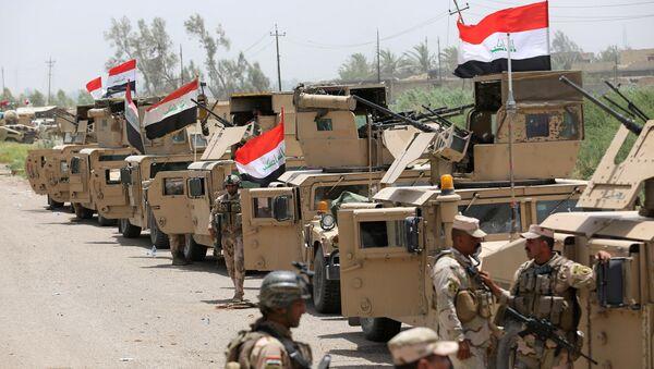 El Ejército de Irak a las afueras de la ciudad de Faluya - Sputnik Mundo