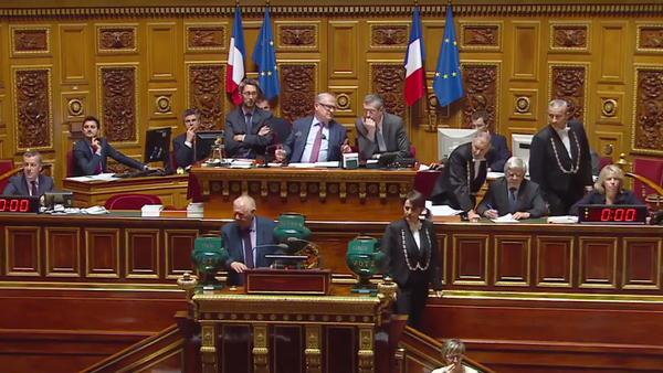 El Senado de Francia aprobó una resolución que exhorta a aliviar las sanciones contra Rusia - Sputnik Mundo