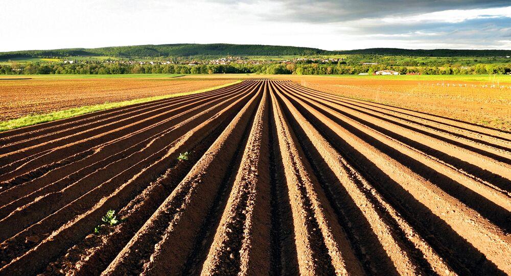Tierra agrícola en Alemania