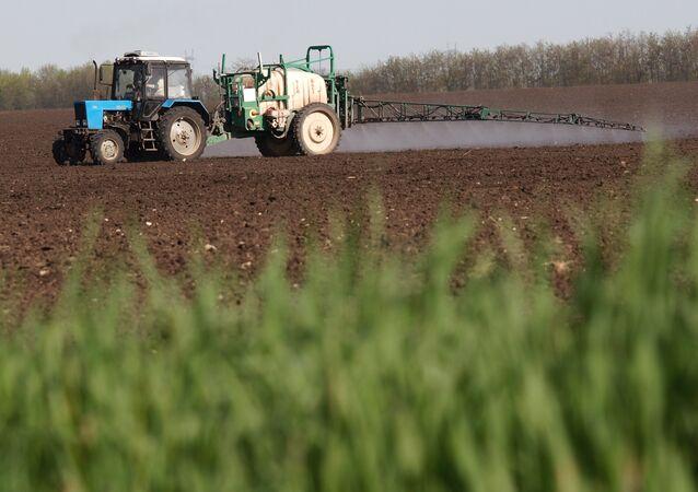 Agricultura en Rusia (imagen referencial)