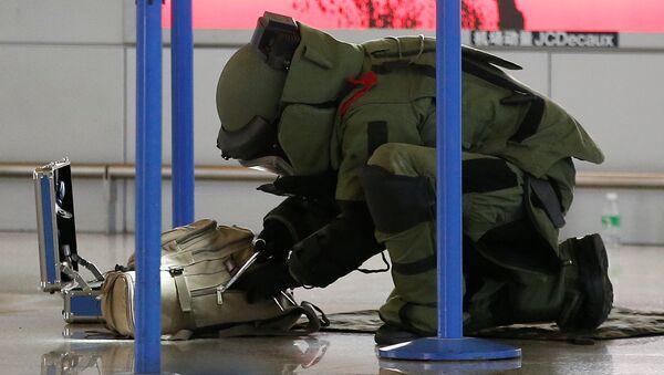 Un zapador chino examina una bolsa en el aeropuerto Pudong, Shanghái - Sputnik Mundo