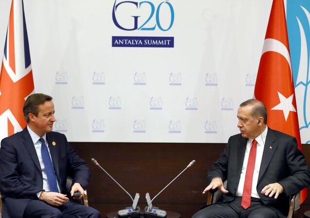primer ministro británico David Cameron con el presidente turco Recep Tayyip Erdogan