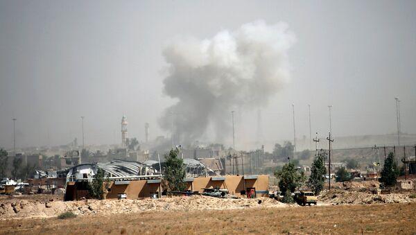 Combates en la ciudad iraquí de Faluya - Sputnik Mundo