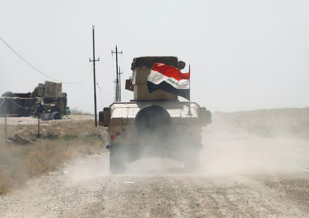 Las Fuerzas iraquíes en Faluya