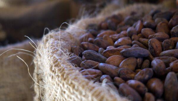 Cacao - Sputnik Mundo