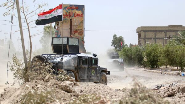 Las fuerzas antiterroristas iraquíes en Faluya - Sputnik Mundo