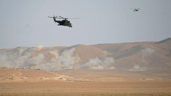Helicópteros Mi-24 cerca de Palmira - Sputnik Mundo