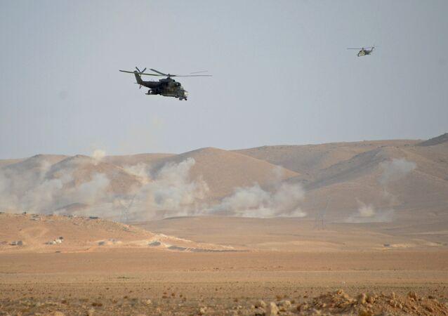Helicópteros Mi-24 cerca de Palmira