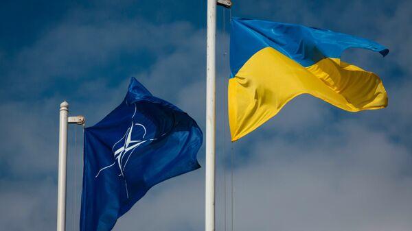 Las banderas de Ucrania y la OTAN - Sputnik Mundo