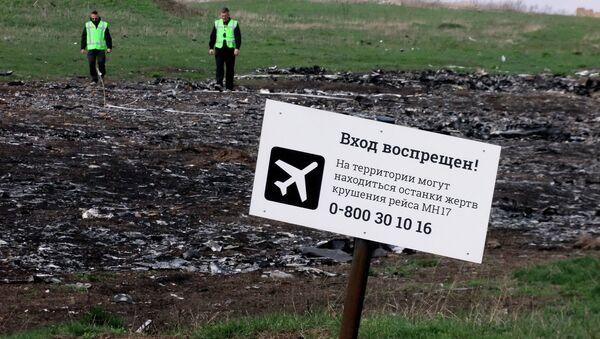 El lugar de la catástrofe de MH17 Boeing - Sputnik Mundo