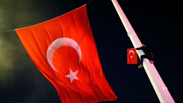 A supporter of Turkish President Tayyip Erdogan climbs up a flagpole during a pro-government demonstration at Taksim square in Istanbul - Sputnik Mundo