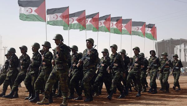 Miembros del Ejército de la Liberación del Pueblo Saharaui con las banderas del Frente Polisario en el campamento de los refugiados del Sahara Occidental Dajla en la provincia de Tinduf - Sputnik Mundo