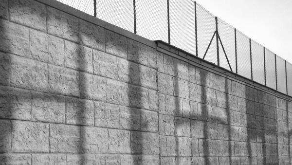 Un muro (imagen referencial) - Sputnik Mundo