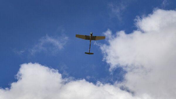 Dron RQ-11B Raven (archivo) - Sputnik Mundo