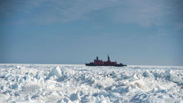 Арктическая экспедиция Кара-зима 2015 - Sputnik Mundo