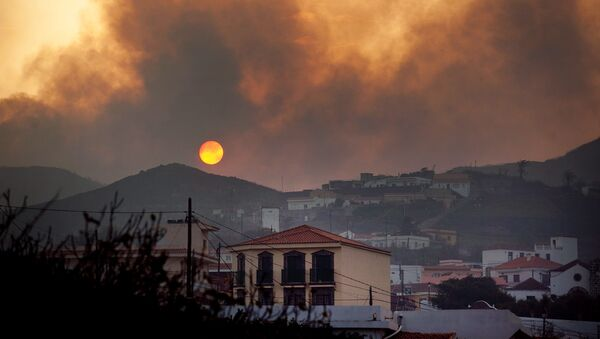 Incendios en las Islas Canarias - Sputnik Mundo