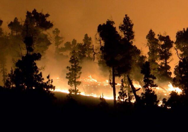 Incendio forestal en España, foto de archivo