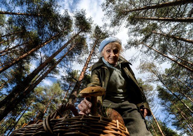 Mujer recogiendo hongos
