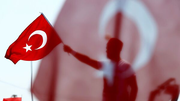 A man waves Turkey's national flag during the Democracy and Martyrs Rally - Sputnik Mundo