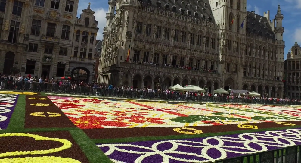 Brussels Flower Carpet 2016
