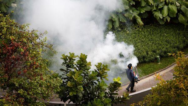 Virus del zika en Singapur - Sputnik Mundo