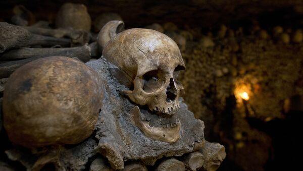Huesos en una cueva (imagen referencial) - Sputnik Mundo