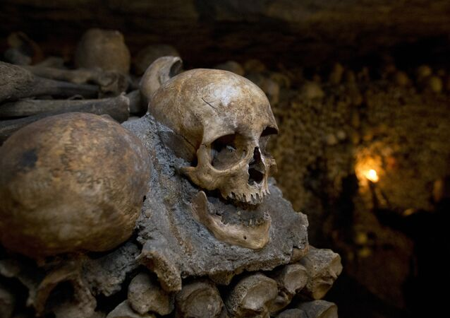 Huesos en una cueva (imagen referencial)